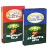 Jumbo kort - Brainwave