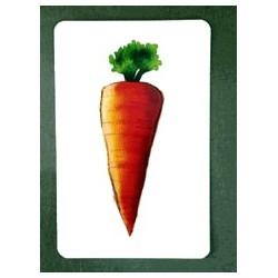 Carrot Culprit