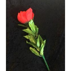Applause Flower