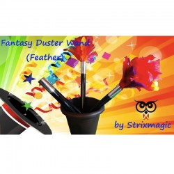 Fantasy Duster Wand