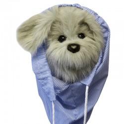 Bugtalerhund Scruff