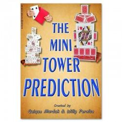 The Mini Tower Prediction