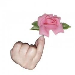 Blomsterfangst