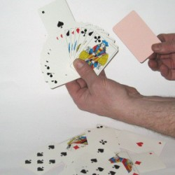 Manipulationskort