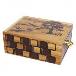 Pop Lock Box