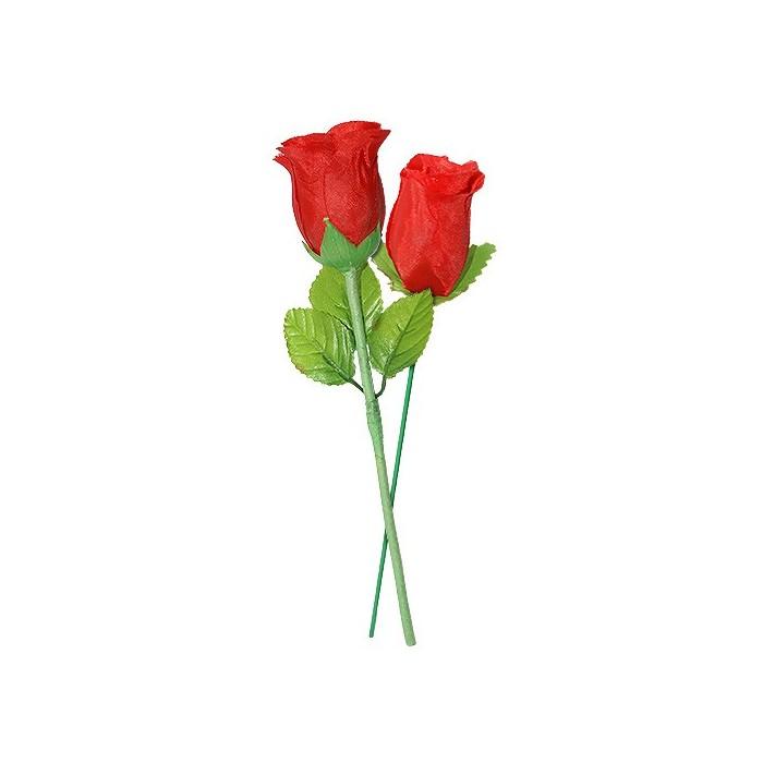 Multiplying Rose